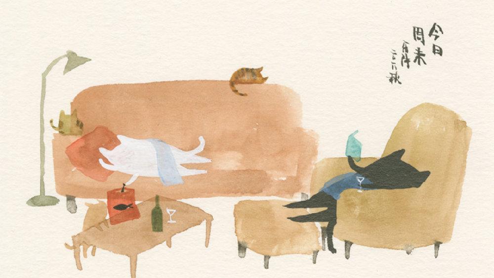 有猫的人,和其他人有什么不一样