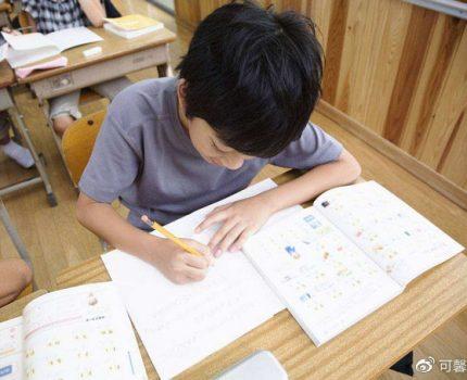 男童无法忍受写作业,找妈妈商量处罚办法,网友:中国孩子真可怜