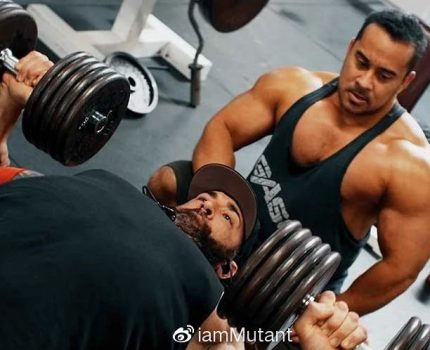别练了,高手的胸肌大都是因为基因好!