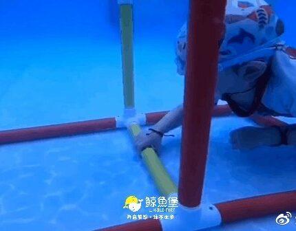 还在问孩子要上多久的课才能轻松畅玩水世界?